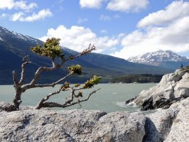 Hike to Smuggler's Cove in Skagway, AK