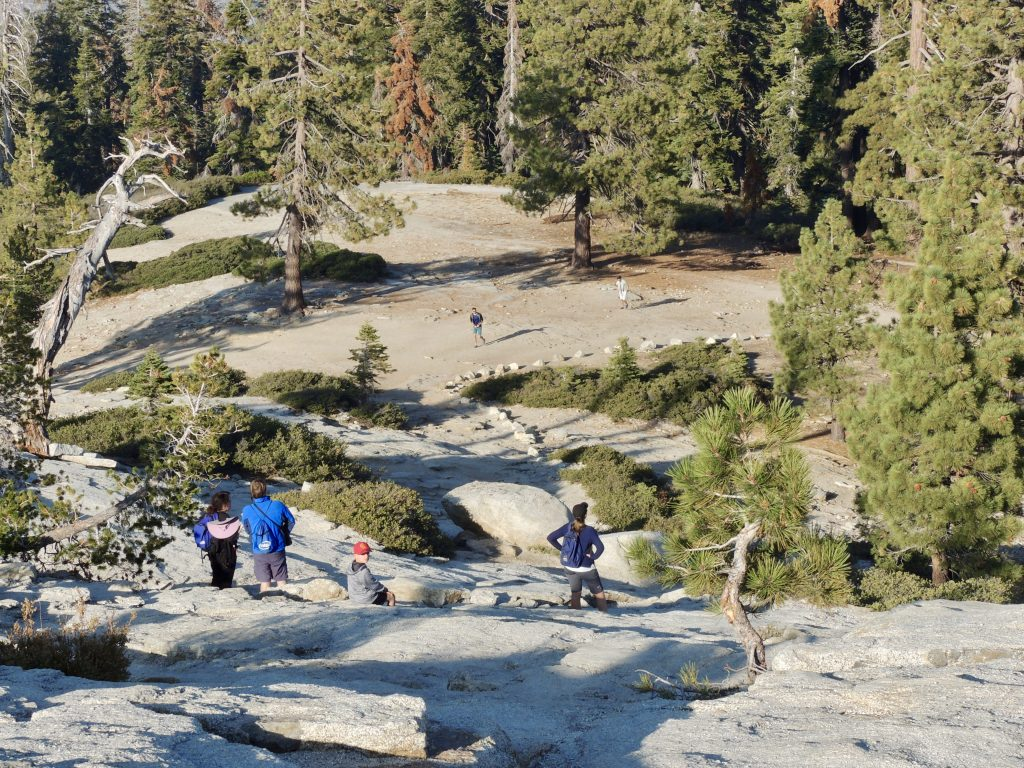 Trail up Sentinel Dome