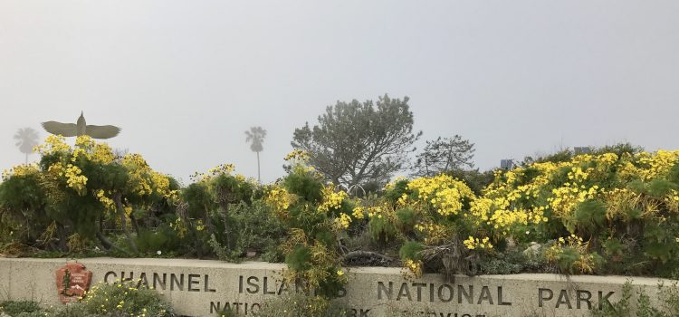 Entrance to Channel Islands National Park Visitor's Center