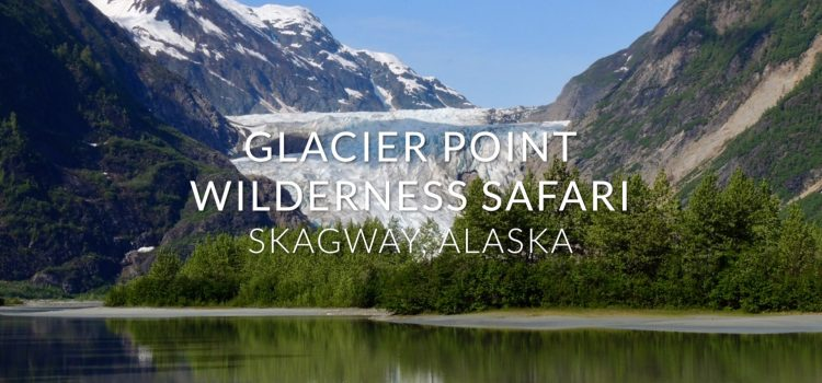 Glacier Point Wilderness Safari (VIDEO)